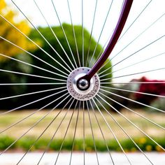Bicycle - Composition. I love the idea of shooting a favorite riding spot through the wheel of your bike.