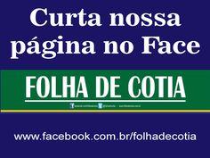 curtafolha_divulga