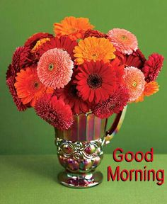 """Really like the Gerbera Daisy idea - put in mason jars with votives around for """"cheap"""" centerpieces? Sweet Good Morning Images, Latest Good Morning Images, Good Morning Roses, Good Morning Picture, Morning Pictures, Morning Pics, Gerbera Daisy Centerpiece, Flower Centerpieces, Gerbera Daisies"""