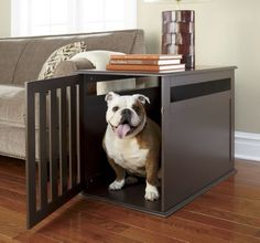 How cool is this Pet Storage, Stuffed Animal Storage, Network Solutions, Business Profile, Adorable Animals, Fur Babies, Organization, Pets, Room
