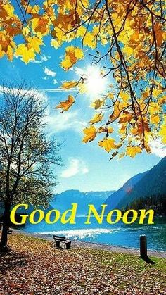 Good Afternoon My Love, Good Afternoon Quotes, Good Day, Autumn Scenery, Morning Wish, Kiss You, Beautiful Roses, Scriptures, It Hurts