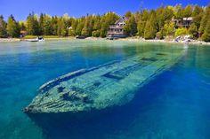 21 Amazing Underwater Sights Guaranteed To Amaze You