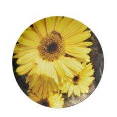 Triple Yellow Plates