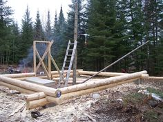 I built a 16' by 20' cabin with a half loft a few years back. I built it from green logs and let it sit a summer before chinking. here's a photo of the start. I used a boom to help with the logs.