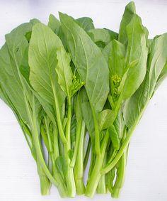 Máy Làm Giá Đỗ: dấu hiệu nhận diện các loại rau, củ ngậm thuốc kíc...
