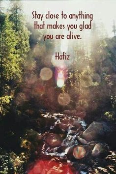 Stay close to anything that makes you glad you are alive.  Hafiz