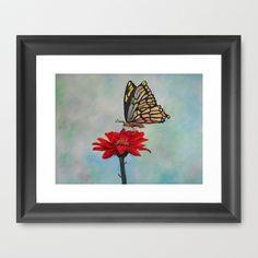 Swallowtail on a Red Gerbera Daisy Framed #Art Print by Rokin Art by #RokinRonda - $36.00