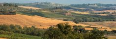 Villa Rental Agency in Tuscany, Italy, and Provence Chianti Classico, Tuscany, Provence, Virginia, Golf Courses, Villa, Country Roads, Lucca, Skyline