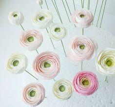 A dozen down...and a few more to go. #workinprogress #petalsweet #sugarflowers #sugarranunculus #signaturepetalsweet #weddingcakes #cakedecorating #sugarflowerclasses #gumpasteflowers #sugarcraft #modernsugarflowers #pink #pretty #cakedesigner #sandiego #slog