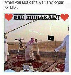 Eid Mubarak♥️♥️♥️ Funny Quotes, Funny Memes, Jokes, Islam Meme, Eid Mubarak Quotes, Eid Greetings, Eid Special, Hennas, Funny Bunnies
