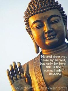 love not hatred buddha picture quote
