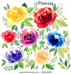 Vector illustration set with different occasions. Cute summer and spring floral set. Floral pattern with watercolor flowers on the white background. Isolated peonies