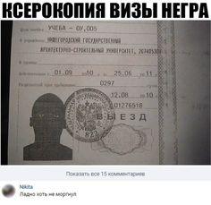 Подборка прикольных картинок и фотографий-81