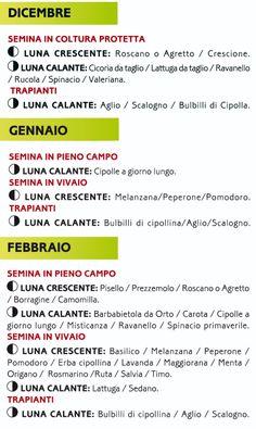 Coltivare ortaggi a Roma; Orti Veio offre orti familiari, un area verde, e consiglia come mantenerli fertili con metodi tradizionali.