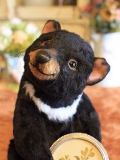 Tazmanian devil Love Bears All Things, Bjd, Bear Photos, Warm Fuzzies, Cute Teddy Bears, Bear Doll, Vintage Toys, French Bulldog, Kawaii