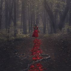 The Trail of Red by Nicole Burton on 500px