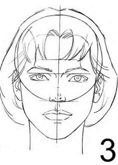 Female face proportions.