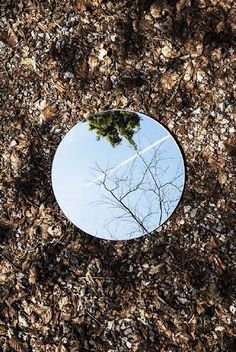 Parallel World by Sebastian Magnani