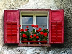 Windows, red shutters, red geraniums, love this  BY A.G