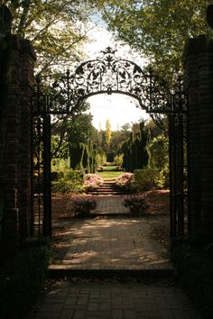 This beautiful wrought iron gate at Filoli  in Woodbury,CA frames a beautiful view.   Photographed by Michael Payne