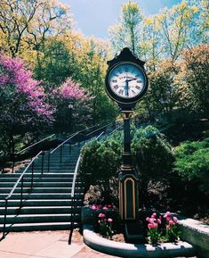Beautiful Boston College and the Million Dollar stairs. College Agenda, College Schedule, College Campus, College Life, Georgia College, Boston College, Boston University, State University, College Board Sat Book