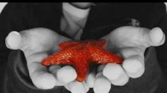 The Starfish Story ~ Making a Difference