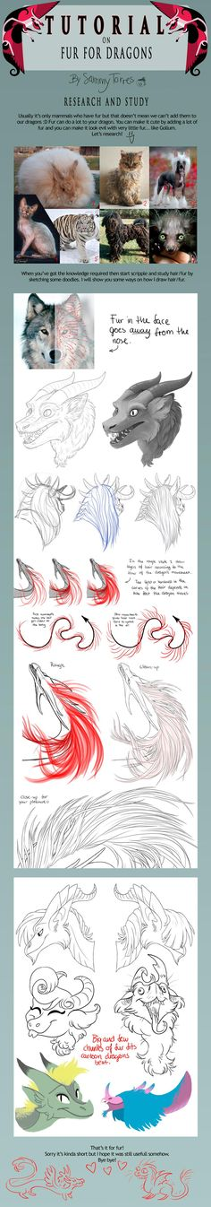 TUTORIAL: Fur for Dragons by SammyTorres on DeviantArt. Theres no reason why dragons can't have fur. Paint Photoshop, Animal Drawings, Art Drawings, Dragon Anatomy, Illustration, Drawing Techniques, Drawing Tips, Dragon Art, Creature Design