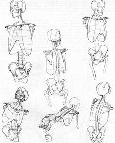 Bammes anatomy of torso Human Skeleton Anatomy, Human Anatomy Drawing, Human Figure Drawing, Figure Drawing Reference, Anatomy Reference, Life Drawing, Human Body Drawing, Human Sketch, Academic Drawing