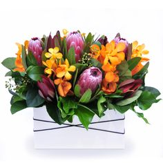 Broome - a deluxe trough arrangement of long-lasting Australian natives and stunning vanda orchids.