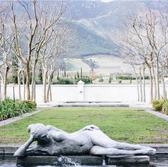 Sitting in the magnificent Franschhoek Valley in South Africa's Western Cape, her lush vines spread across with gentle vistas over the valley floor, with the rugged mountains beyond. This is heartland South African wine country at its very finest. South African Wine, Sculpture Garden, Luxury Accommodation, Wine Country, Provence, Photo Credit, Acre, Lush, Vines