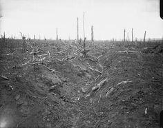 WW1, Somme. 15 July-3 Sept 1916: Battle of Delville Wood…