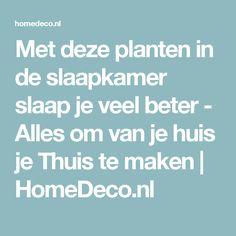 Met deze planten in de slaapkamer slaap je veel beter - Alles om van je huis je Thuis te maken | HomeDeco.nl