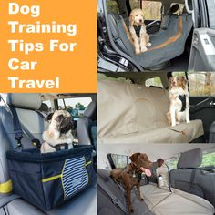 Traveling with your dog should be a positive experience for both of you. Here are some tips from dog expert Harrison Forbes to make trips in the car go well.