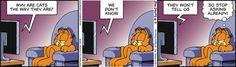 Garfield Comic Strip June 02 2015 on GoComics.com