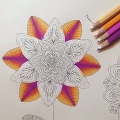 #combinandocoresJSI de hoje!!! ❤️ Comecei essa página do Livro Reino Animal, e amei essa combinação que fiz! ROXO➕ROSA➕LARANJA➕ROSA CLARO usei lápis aquarelável! My Friend ☺️ espero que gostem! --------------------------------------------------- #⃣ Use #jardimsecretoinspire para que seu colorido seja compartilhado aqui no nosso perfil!! ➡️ Envie por Direct também as suas fotos!! #jardimsecretoinspire #jardimsecreto #livrojardimsecreto #secretgarden #amamosjardimsecreto #inspiração #col...