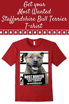 Most Wanted Staffordshire Bull Terrier T-shirt -Dog Shirts -- 100% Cotton. Imported. Machine wash cold with like colors, dry low.Anvil relaxed fit, royal blue,brown, kelly green, yellow (lemon), red (cranberry), crew neck tee, sayings, quotes, unisex, man, women, girls, boys, Lightweight, Classic fit, TearAway label, Double-needle sleeve and bottom hem. Dog Lover t shirts, Dog Mugshot t-shirts, Staffordshire Bull Terrier tee shirts, with graphics. 4.5 oz 100% Combed Ringspun Cotton,
