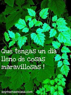 Te quiero !!!