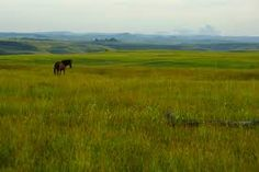 Image result for sumba indah