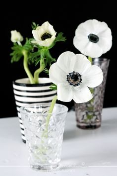 Simple:   black & white flowers in pretty glasses.