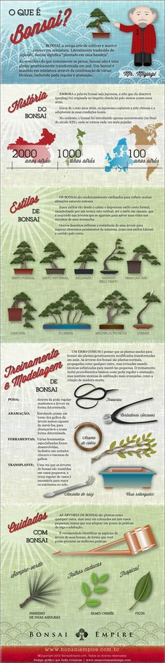 Infográfico do Bonsai