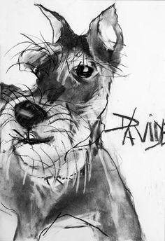 Valerie Davide dog Frobisher-frolicking