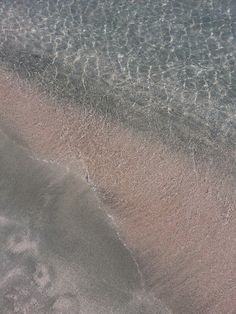 Seashell sand