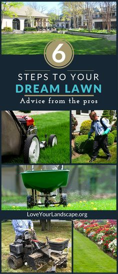 Expert tips to create the beautiful, lush and weed-free lawn of your dreams