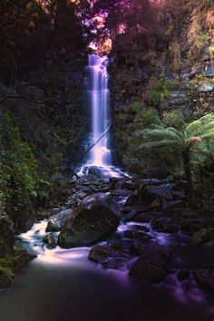 Erskine Falls, Lorne on the Great Ocean Road, Australia #gadventures