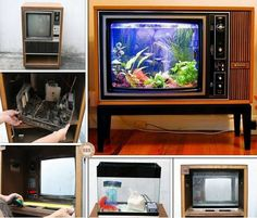 A classic old TV repurposed into a Fish Tank can look amazing. This is a DIY you'll love to try. Aquarium Terrarium, Aqua Culture, Cedar Homes, Vintage Tv, Old Tv, Handmade Home, Diy Stuffed Animals, Easy Diy Projects, Reuse