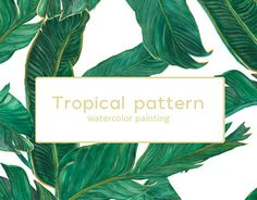 """Check out new work on my @Behance portfolio: """"Palm tree leaves patterns"""" http://be.net/gallery/58360957/Palm-tree-leaves-patterns"""