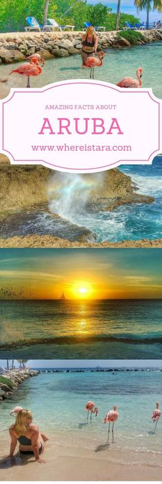 50 AMAZING FACTS ABOUT ARUBA - Caribbean Island Paradise. Travel, wanderlust, tropcial, beach and more.