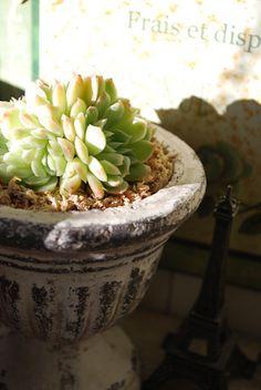 good idea for pedestal pot