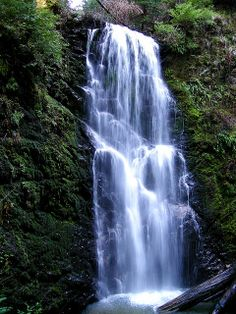 Take a hike!! The photo is Berry Falls, but there are lots of wonderful places to hike in and around Santa Cruz County!