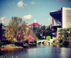 JMU-one of the most beautiful campuses :)